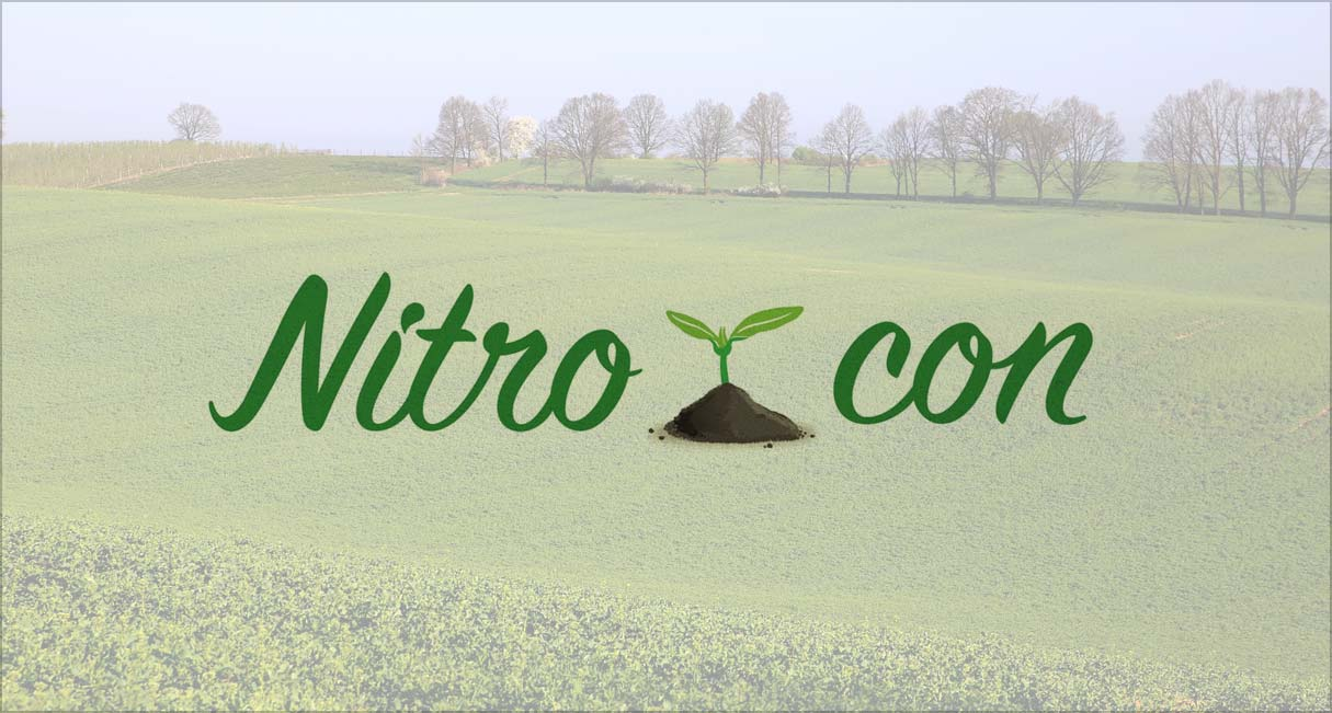 INCREASE THE PRODUCTIVITY IN A SUSTAINABLE WAY OF SEVERAL ROTATIVE CROPS IN A VULNERABLE FIELD AFFECTED OF POLLUTION WITH NITRATES OF AGRICULTURAL ORIGIN IN RIOJA ALTA.